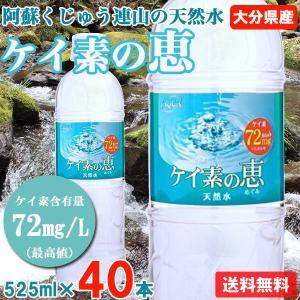 ケイ素水 シリカ水 500ml 48本 高濃度ケイ素水 大分...