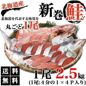 北海道産 新巻き鮭 姿切り身(中塩) 一尾まるごと! 焼き鮭でも◎ 贅沢にお茶漬けに入れても◎ 極上...