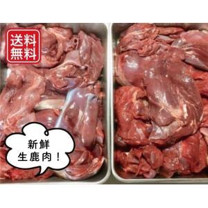 【送料無料】ペット用 新鮮生鹿肉3kg お得な詰合わせ(もも肉・肩肉・スネ・ネック・バラ肉)毛艶に良い酵素パワー 兵庫県但馬産本州鹿 tajimart