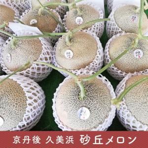 【期間限定】京丹後 砂丘メロン 1玉約2kg 白岩功農園直送|tajimart
