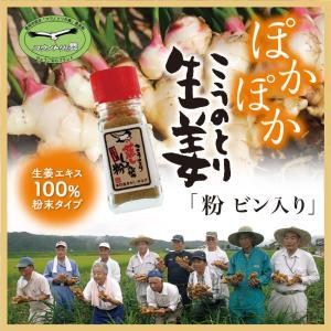 こうのとり生姜の粉 ビン入り10g ひょうご安心ブランド  国産しょうが100% 無添加  兵庫県豊岡市産|tajimart
