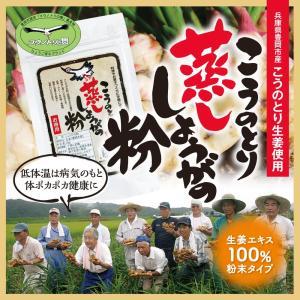 こうのとり生姜の粉 パック入り25g ひょうご安心ブランド  国産しょうが100% 無添加  兵庫県豊岡市産|tajimart