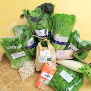 送料無料 旬のごちそう野菜セット7〜8種+白米1kg 国産・兵庫県但馬産など詰合せ 減農薬・ハイブリッド農法 おうちごはん|tajimart