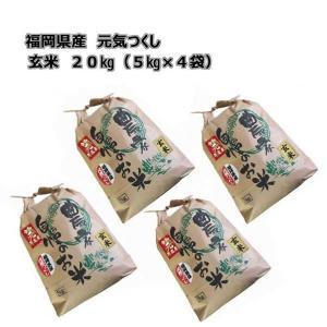 令和元年産 新米 福岡県産 元気つくし 玄米 20kg (5kg×4袋) 農家直送 送料無料