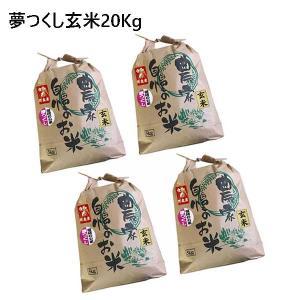 令和元年産 新米 福岡県産 夢つくし 玄米 20kg (5kg×4袋) 農家直送 送料無料