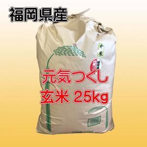 29年産 / 玄米 福岡県産 元気つくし 30kg 農家直送...