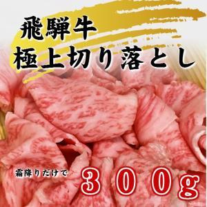 飛騨牛霜降り切り落とし 300g 焼しゃぶ すき焼き 牛丼 肉じゃが 冷凍|takagiseiniku
