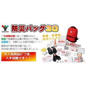 山善 防災バッグ30 軽量・低価格 一時避難対策 災害 takahashihonsha