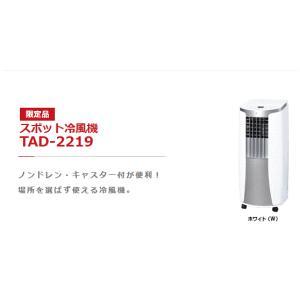 トヨトミ スポット冷風機 TAD-2219 パワフル冷風運動 使用場所:屋内・凖屋内 【代引不可】