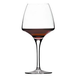 オープンナップ プロ・テイスティング(シェフ&ソムリエ)(ワイングラス)|takamura