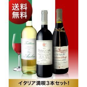 第2弾 送料無料 イタリア ワインの魅力に迫る!有名生産者の逸品も入ったイタリア満喫3本セット(白1本赤2本)|takamura
