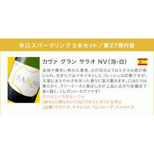 【送料無料】【第2弾】家飲みを応援♪お客様の声から生まれた!超!お気軽3本 スパークリング ワインセット(泡白3本)(追加9本同梱可)|takamura|02