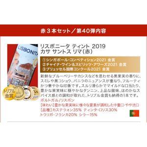 送料無料 第24弾 家飲みを応援♪ 超お気軽3本 赤ワインセット|takamura|02