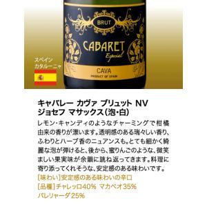 送料無料  第3弾 有名シャンパンも入って驚きの1本あたり917円(税別)!スーパー豪華&破格スパークリングワイン 12本セット!!|takamura|11