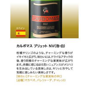 送料無料  第3弾 有名シャンパンも入って驚きの1本あたり917円(税別)!スーパー豪華&破格スパークリングワイン 12本セット!!|takamura|12