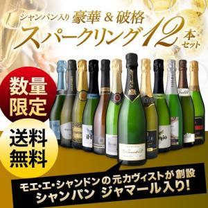 送料無料 シャンパンも入って驚きの1本あたり1000円(税別)!スーパー豪華&破格スパークリングワイン 12本セット!!|takamura|02