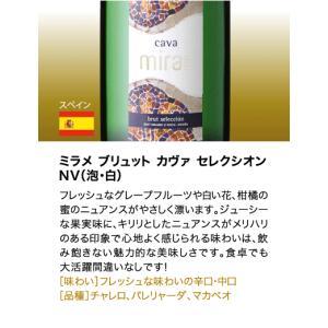 送料無料 シャンパンも入って驚きの1本あたり1000円(税別)!スーパー豪華&破格スパークリングワイン 12本セット!!|takamura|14