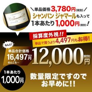 送料無料 シャンパンも入って驚きの1本あたり1000円(税別)!スーパー豪華&破格スパークリングワイン 12本セット!!|takamura|03