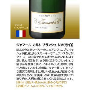 送料無料 シャンパンも入って驚きの1本あたり1000円(税別)!スーパー豪華&破格スパークリングワイン 12本セット!!|takamura|04