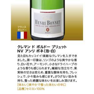 送料無料 シャンパンも入って驚きの1本あたり1000円(税別)!スーパー豪華&破格スパークリングワイン 12本セット!!|takamura|05