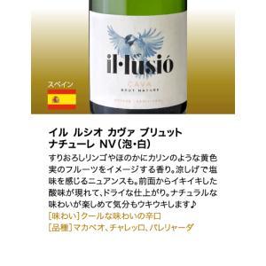 送料無料 シャンパンも入って驚きの1本あたり1000円(税別)!スーパー豪華&破格スパークリングワイン 12本セット!!|takamura|08