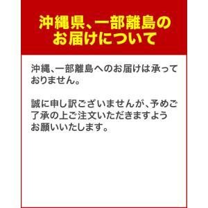 送料無料 レトワール ワインクーラー(l'etoile winecooler)ホワイト 8本用(WCE-8W)|takamura|08