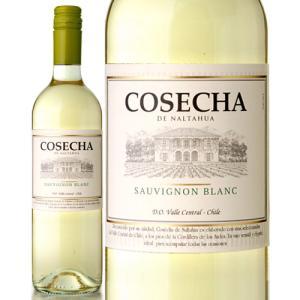 コセチャ [2018] ソーヴィニヨン・ブラン (旧 コセチャ タラパカ ソーヴィニヨン・ブラン) ( 白ワイン )|takamura