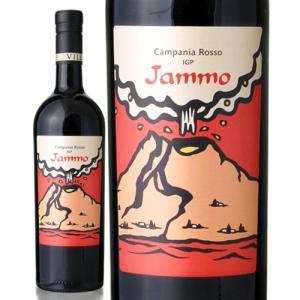 ヤンモ ロッソ カンパーニア[2013]ヴィッラ マティルデ(赤ワイン)|takamura