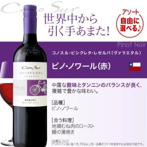 送料無料 好きな品種がよりどり選べる♪10本自由な組み合わせ!コノスル ビシクレタ レゼルバ(ヴァラエタル)アソート10本ワインセット takamura 05