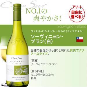 送料無料 好きな品種がよりどり選べる♪10本自由な組み合わせ!コノスル ビシクレタ レゼルバ(ヴァラエタル)アソート10本ワインセット takamura 09