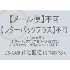 ネコの玄関マット ドアマット Noir No.1173 キャット CAT ねこ 雑貨 E|takano-coffee|05