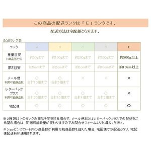 ネコの玄関マット ドアマット Noir No.1173 キャット CAT ねこ 雑貨 E|takano-coffee|06