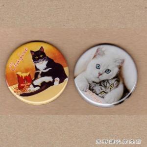 猫 文房具 ピクチャーメモマグネット 2個組 CAT 雑貨【レターパックプラス可】【メール便可】A|takano-coffee