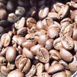ケニア カラツ・ファクトリー【コーヒー豆 200g】【レターパックプラス可】|takano-coffee