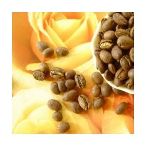 エチオピア イルガチェフェ ナチュラル【コーヒー豆 200g】【レターパックプラス可】|takano-coffee