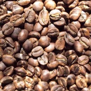 ホンジュラス エル・セロ【コーヒー豆 200g】【レターパックプラス可】|takano-coffee