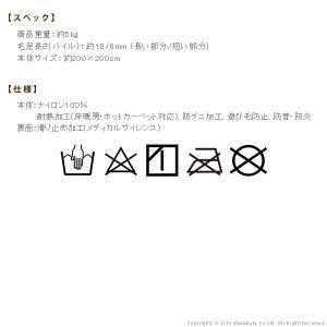 ラグ 洗える ミックスカラーラグ 〔ルーナ〕 200x200cm 防ダニ takanonaisou 03
