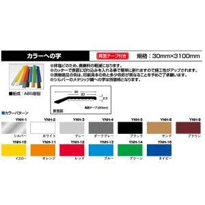 プラスチックカラーヘの字押え 30mm×3100mm|takanonaisou