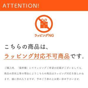 瀬戸内海産 干しむき海老 干しえび/大サイズ 70g 無添加/無着色 takao-s 04