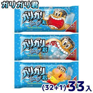 赤城乳業 ガリガリ君ソーダ (32+1)33入(冷凍)|takaoka