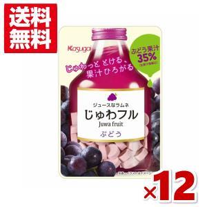 (クリックポスト全国送料無料)じゅわフル ぶどう (6×2)12入 (CP3)(ポイント消化)|takaoka