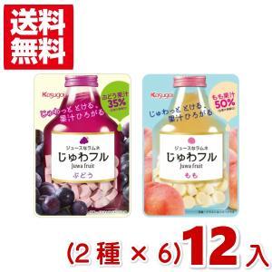 (クリックポスト全国送料無料)春日井 じゅわフル (2種類×6袋)12袋入 (CP3)(ポイント消化)|takaoka