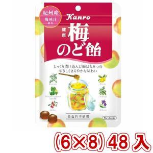 (本州一部送料無料) カンロ 健康梅のど飴 90g (6×8)48入 (Y10)