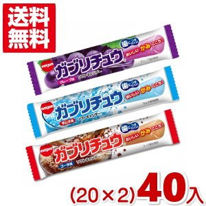 明治チューインガム ガブリチュウ (20×2)40入 (ポイント消化) 2つ選んでメール便全国送料無料|takaoka