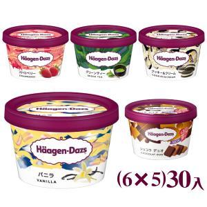 (5つ選んで、本州一部冷凍送料無料) ハーゲンダッツ ミニカップ (6×5)30入|takaoka