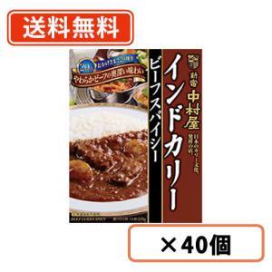 中村屋 インドカリー ビーフスパイシー 200g×40個◆ takaomarket