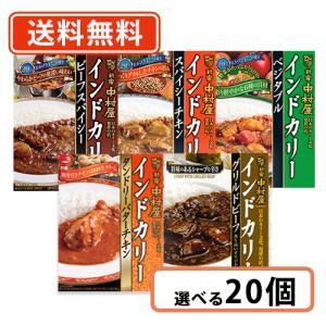 新宿中村屋 インドカリー 5種類から選べる 20個セット ビーフスパイシー ベジタブル バターチキン【送料無料(一部地域を除く)】 takaomarket