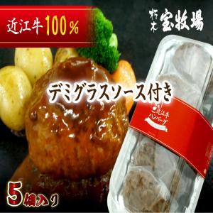 滋賀ご当地モール 近江牛100% デミグラスソース ハンバーグ 5個入り 合計 500g 1個100...