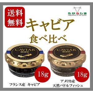 キャビア食べ比べ 2種 フランス産 アメリカ産 パストライズ キャビア 18g|takarajima9666