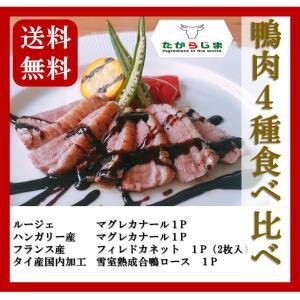 鴨肉4種 食べ比べ マグレカナール フィレドカネット 鴨 カモ 合鴨|takarajima9666